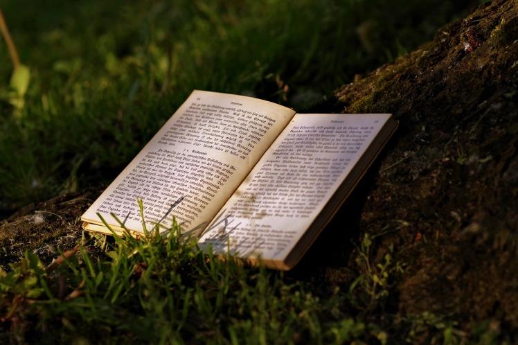 book-2325624_1280
